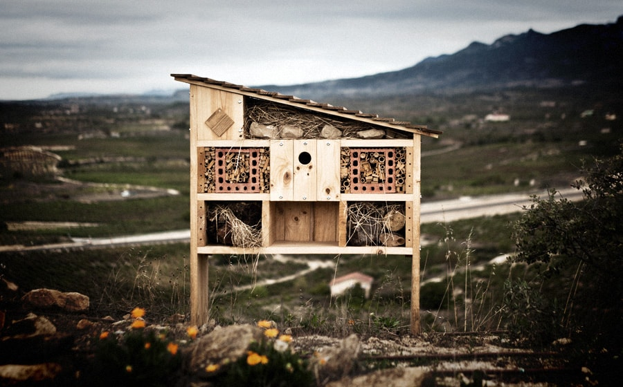 El Hotel de Insectos, un sistema natural y respetuoso con el ecosistema local || The Insects Hotel, a natural and respectful system for the local ecosystem