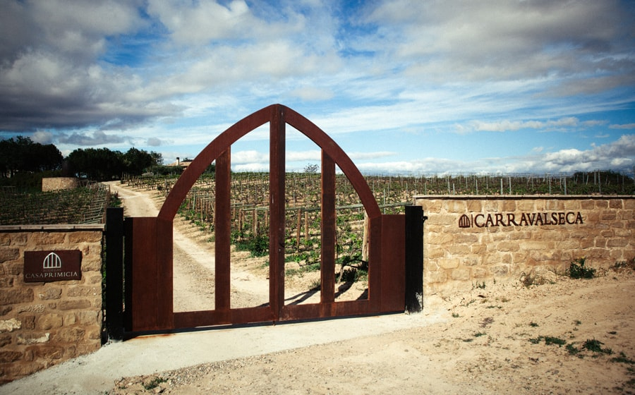 Puerta de entrada a Los Jardines y Viñedos de Carravalseca || Entrance door to the Carravalseca Gardens and Vineyards