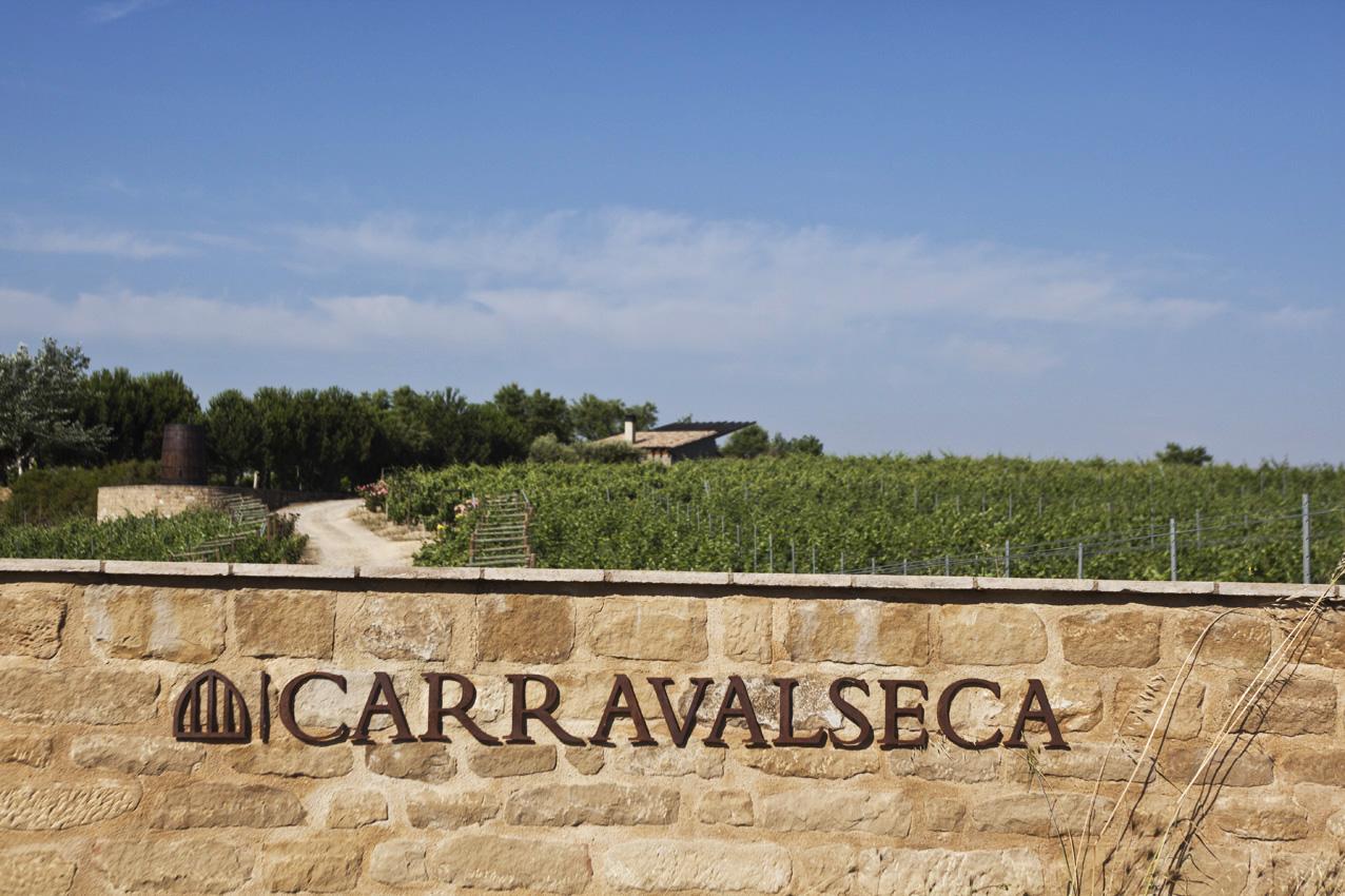 entrada viñedo Carravalseca en Bodega Casa Primicia